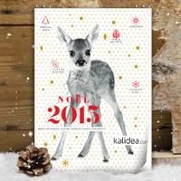 Billetterie CE - Catalogue Hiver 2015